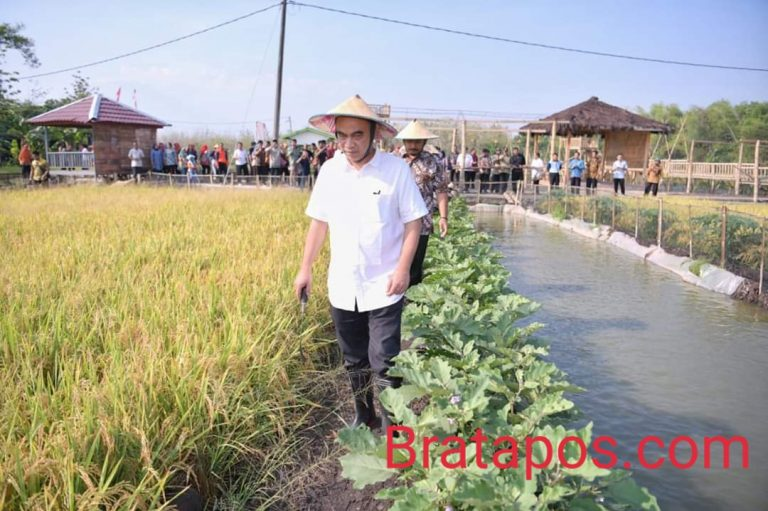 Wakil Mentri Desa PDT Dan Transmigrasi Blusukan Ke Ngawi - Bratapos.com